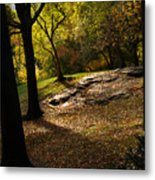 In The Magical Light 2 Metal Print