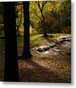 In The Magical Light Metal Print