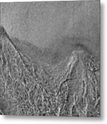 In The Moment Bw  Metal Print