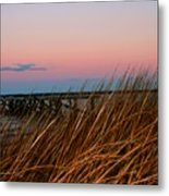 In The Rushes Metal Print