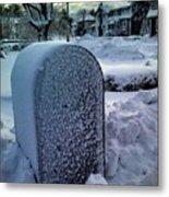 In The Snow Metal Print