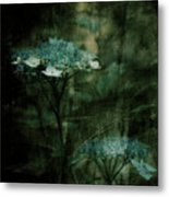 In The Still Of The Night Metal Print