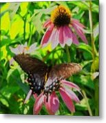 In The Upper Garden - One Metal Print