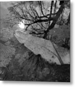 In The Water Bw  Metal Print