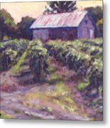 In Wine Country Metal Print by Michael Camp