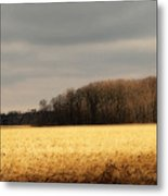 In Yonder Timber Metal Print