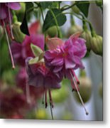 Incredible Fuschia Metal Print