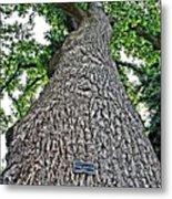 Independence Tree Metal Print