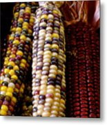 Indian Corn Metal Print