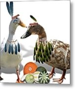 Indian Ducks Metal Print