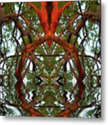 Indian Good Luck Metal Print