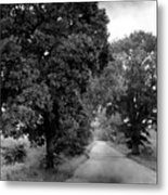 Indiana Road And Trees Metal Print