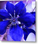 Indigo Flower Metal Print