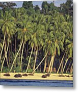 Indonesian Beach Metal Print