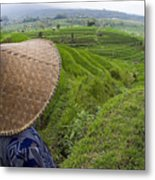Indonesian Rice Farmer Metal Print