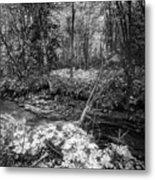 Infra Creek  Metal Print