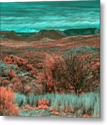 Infrared Arizona Metal Print