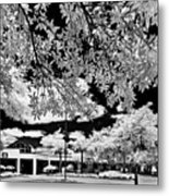 Infrared Indian River State College Hendry Campus #5 Metal Print