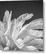 Infrared Sago Palm Metal Print