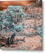 Infrared Zion Metal Print