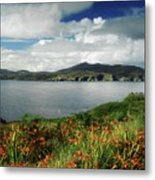 Inishowen Peninsula, Co Donegal Metal Print by The Irish Image Collection