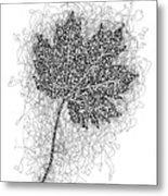 Ink Drawing Of Maple Leaf Metal Print