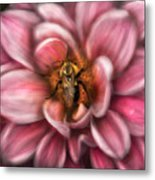 Insect - Bee - Center Of The Universe  Metal Print