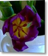 Inside A Purple Tulip Metal Print