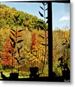 Inside Looking Outside At Fall Splendor Metal Print