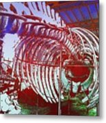 Inside Moby Dick Metal Print
