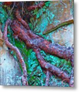 Insinuation Metal Print