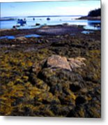 Inter-tidal Zone Deer Isle Metal Print
