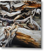Intertwined Metal Print by Chris Steinken