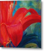 Intimate Lilly Metal Print