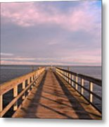 Into The Clouds Metal Print