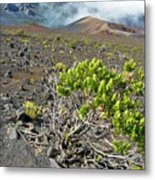 Into The Crater Metal Print