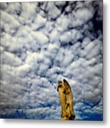 Into The Firmanent Metal Print