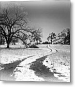 Into The Foothills Metal Print by Floyd Hopper