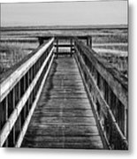 Into The Marsh  Metal Print