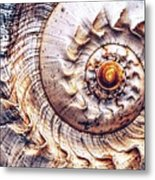 Into The Spiral Metal Print