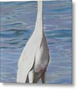 Intracoastal Sentinel   Great Egret Metal Print
