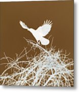 Inverted Crow Metal Print