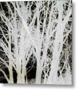 Inverted Nature Metal Print