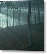 Iowa Fog Rays Metal Print