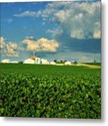 Iowa Soybean Farm Metal Print