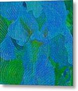Iris Ageless Blossom  Metal Print