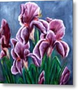Iris Awakens Metal Print