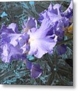 Iris Azulez Metal Print