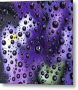 Iris Bubbles Metal Print