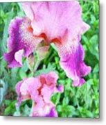Iris Flower Photograph I Metal Print